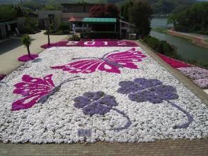 芝桜2012