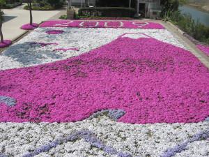 芝桜2009