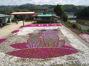 芝桜2015